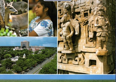 Book-Yucatan-English-Backcover