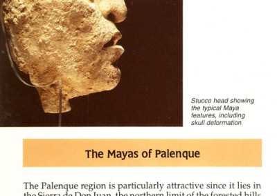 Guide-Palenque-English-Page1